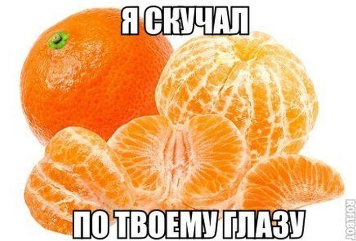 ���������� �������� (131 ����)