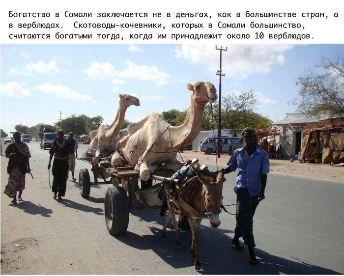 Интересные подродности о Сомали (11 фото)