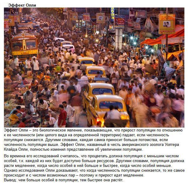 Методы влияния общества на человека (10 фото)