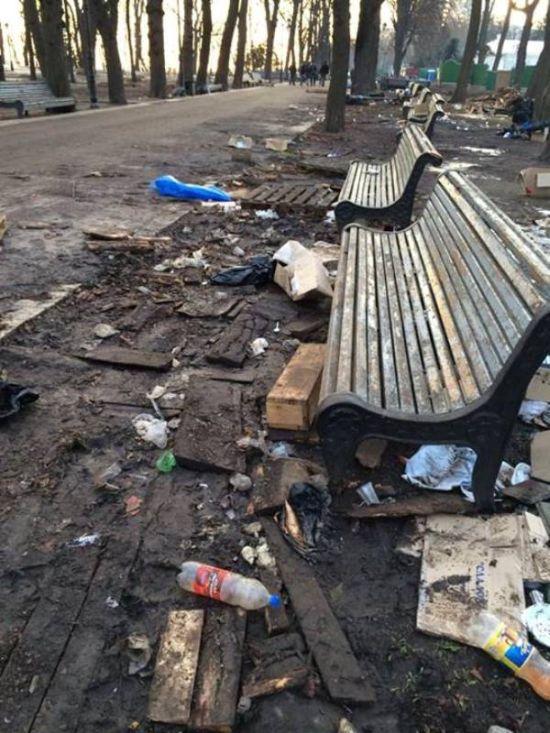 Последствия митинга в Мариинском парке (7 фото)