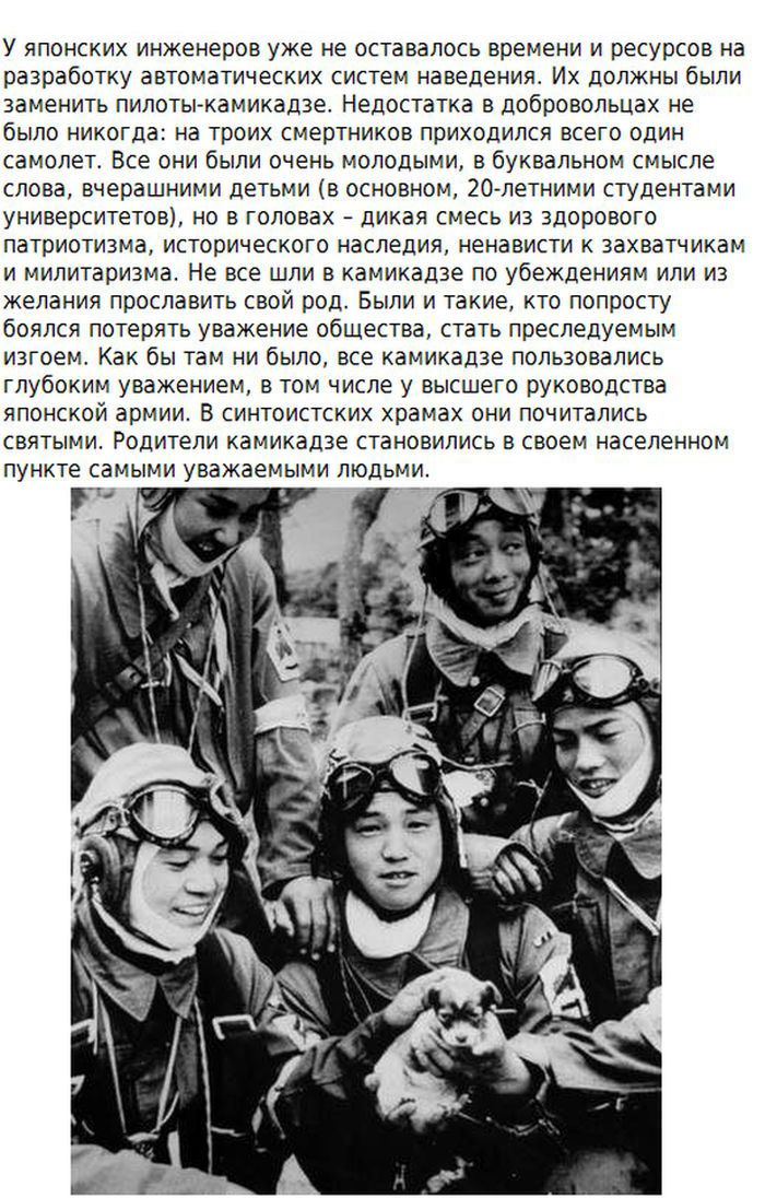 Факты о происхождении японских камикадзе (10 фото)