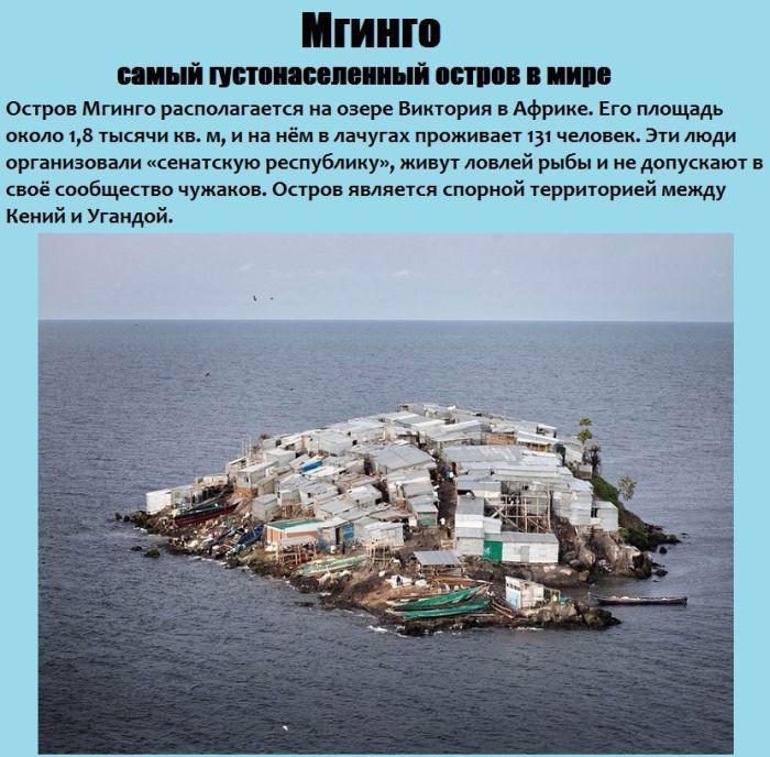Самый густонаселенный остров в мире (8 фото)
