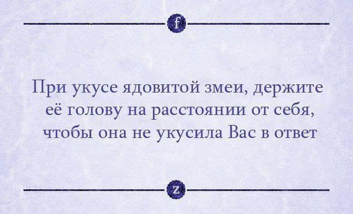 http://cdn.trinixy.ru/pics5/20140124/podborka_78.jpg