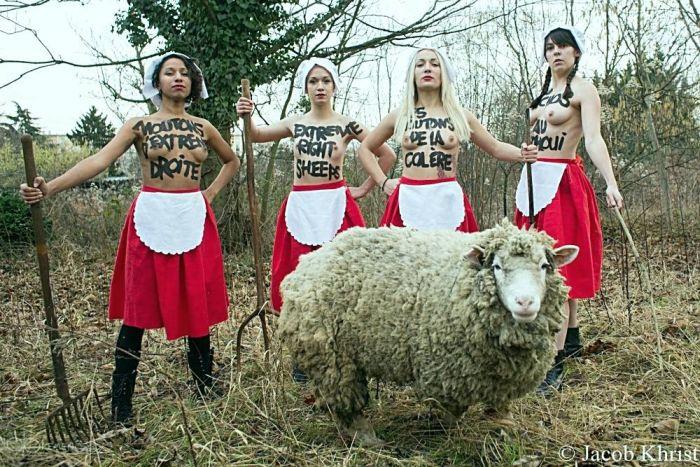 Акция FEMEN против однополых браков (10 фото)