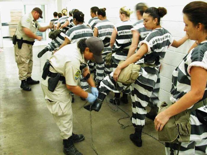 голые девочки в тюрьме