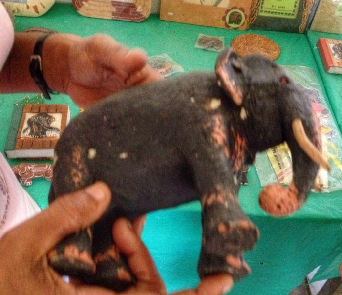 Успешный бизнес из слоновьего навоза (11 фото)