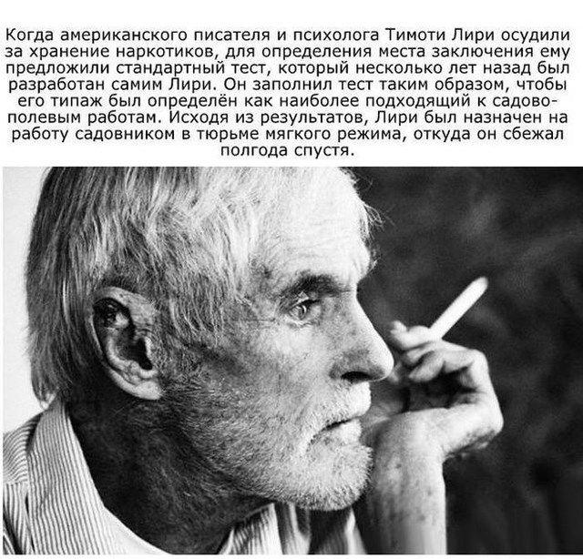 Познавательные факты о знаменитых людях (13 фото)