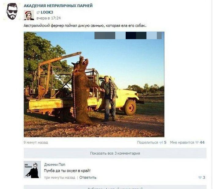Смешные комментарии из социальных сетей. Часть 23 (37 скриншотов)