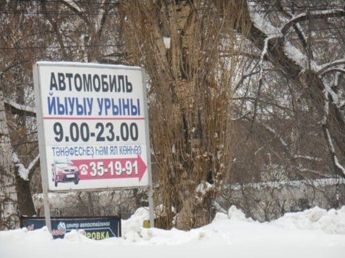 Свежая подборка маразмов (51 фото)