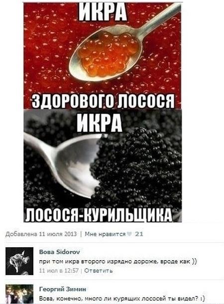 Смешные приколы из социальных сетей (60 картинок)