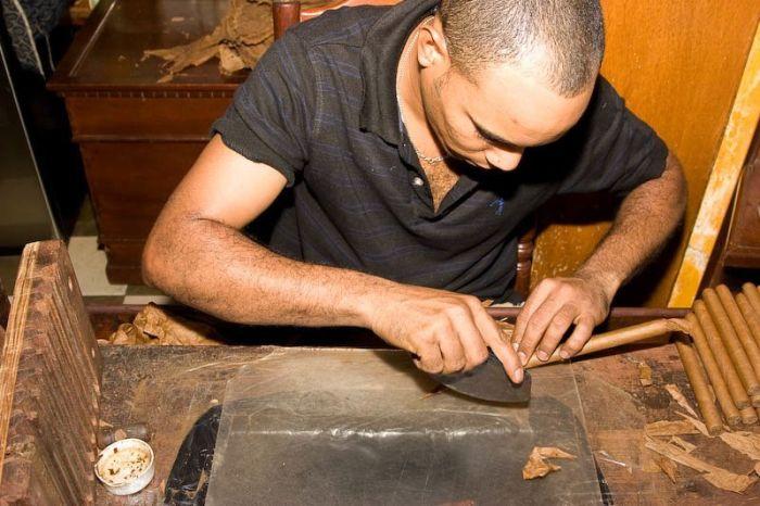 Как производят сигары в Доминикане (26 фото)