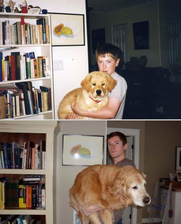 Домашние животные спустя годы (22 фото)