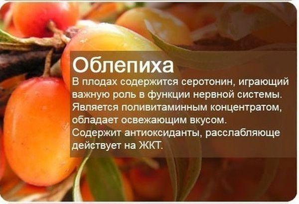 О пользе фруктов и ягод