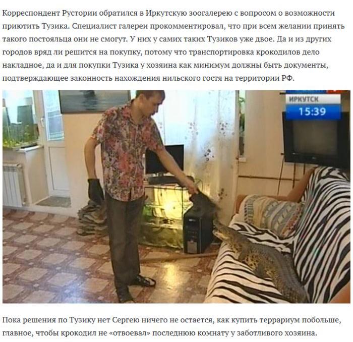 Необычный домашний питомец захватил квартиру (6 фото)