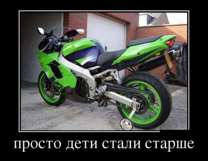 http://trinixy.ru/pics5/20140303/demotivatory_24.jpg