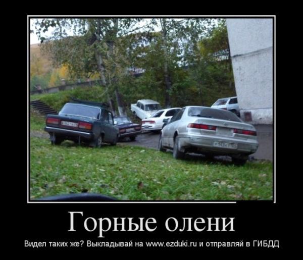Ездюки.ру: новый способ бороться с автохамами