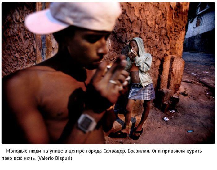 """""""Пако"""" – дешевый наркотик для бедных стран (23 фото)"""