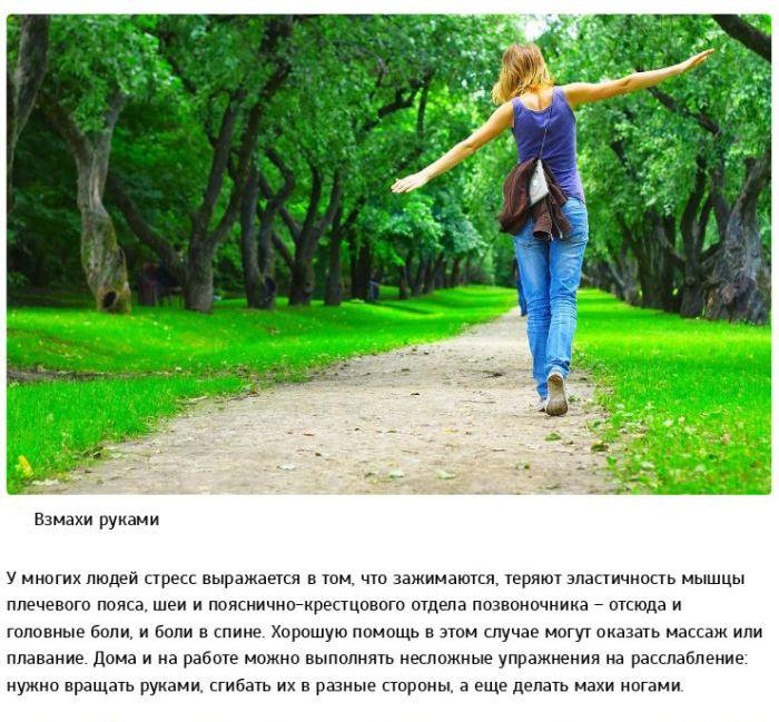 Правильные способы, которые помогут снять стресс (14 фото)