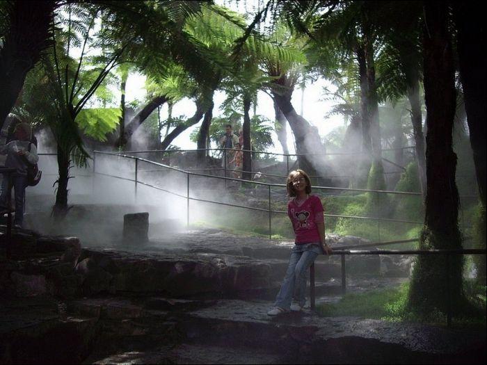 """Уникальный вулканический парк """"Вулкания"""" во Франции (10 фото)"""