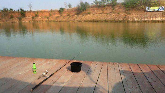 """""""Озеро монстров"""" в Таиланде (8 фото)"""