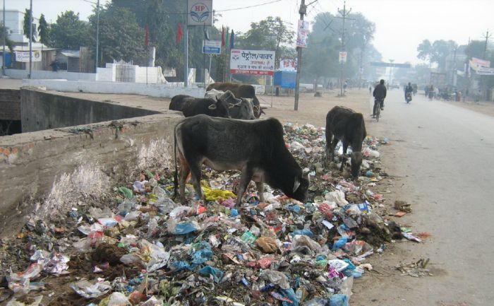 Обратная сторона мегаполисов в Индии (55 фото)