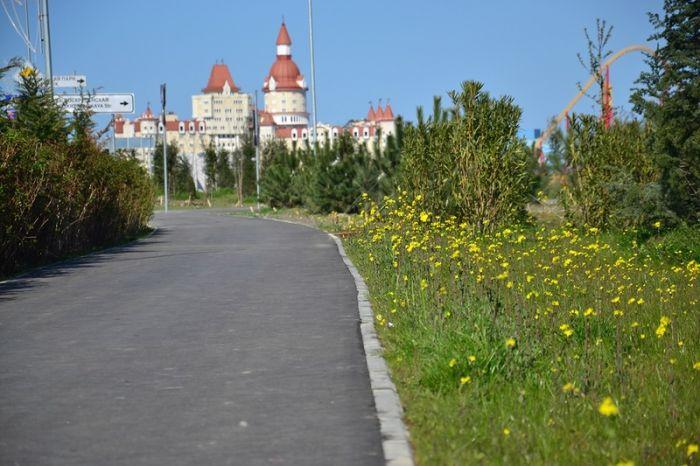 Мертвый город: Сочи после Олимпийских игр 2014 (44 фото)