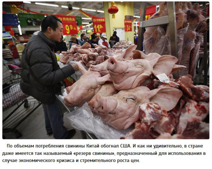 Топ-10 шокирующих фактов о жизни в Китае (10 фото)