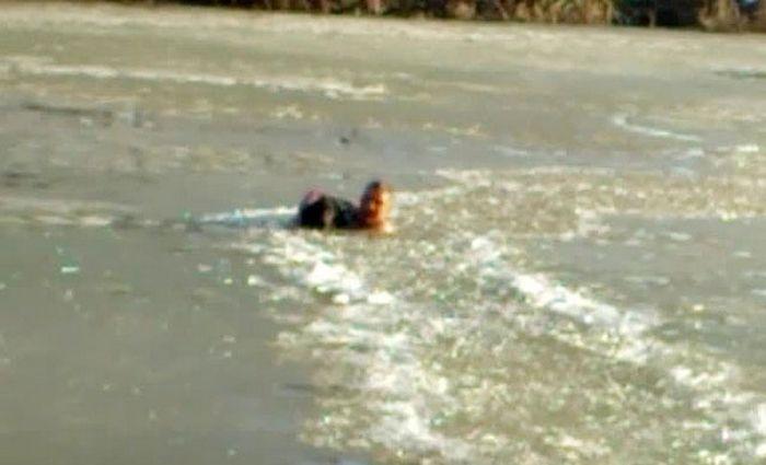 Мужчина бросился в ледяную воду, чтобы спасти тонущего пса (3 фото + видео)