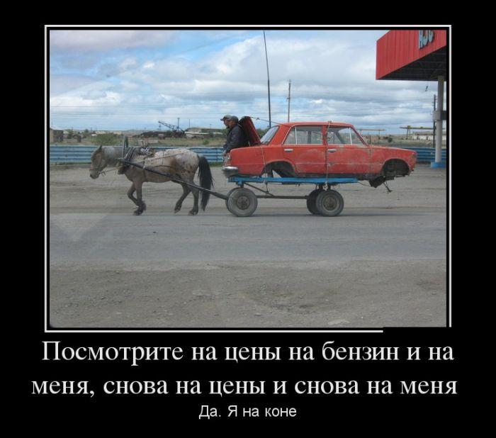 http://trinixy.ru/pics5/20140402/demotivatory_06.jpg