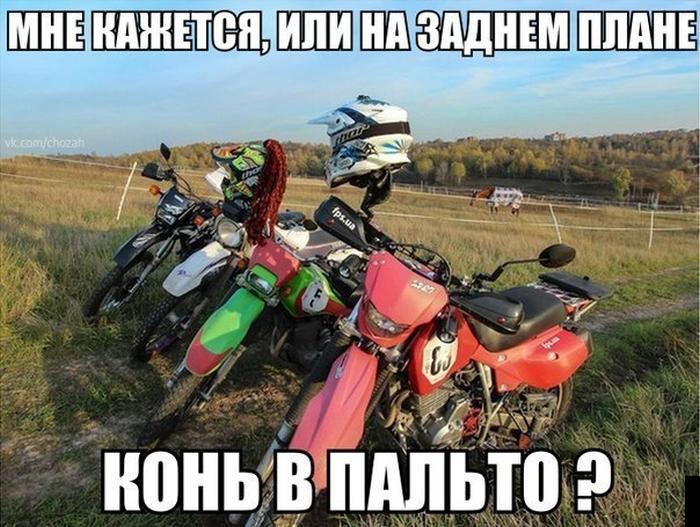 podb_01.jpg