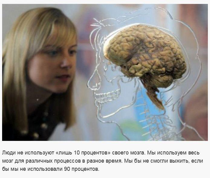 Ложные научные утверждения (30 фото)