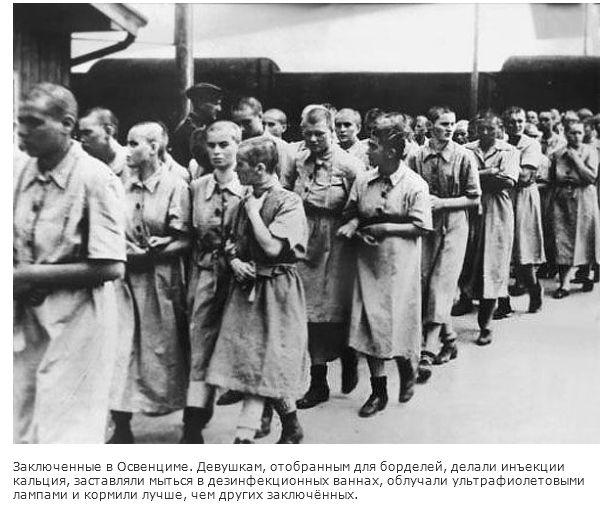 О проституции в нацистской Германии времен Второй Мировой войны (28 фото)