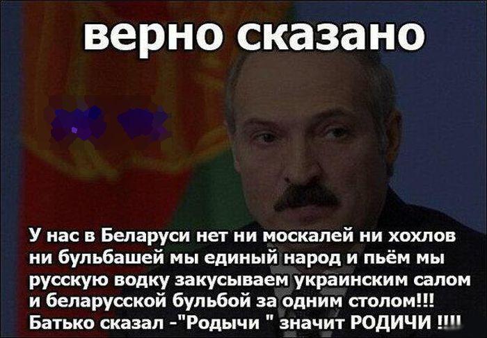 http://cdn.trinixy.ru/pics5/20140411/podborka_71.jpg