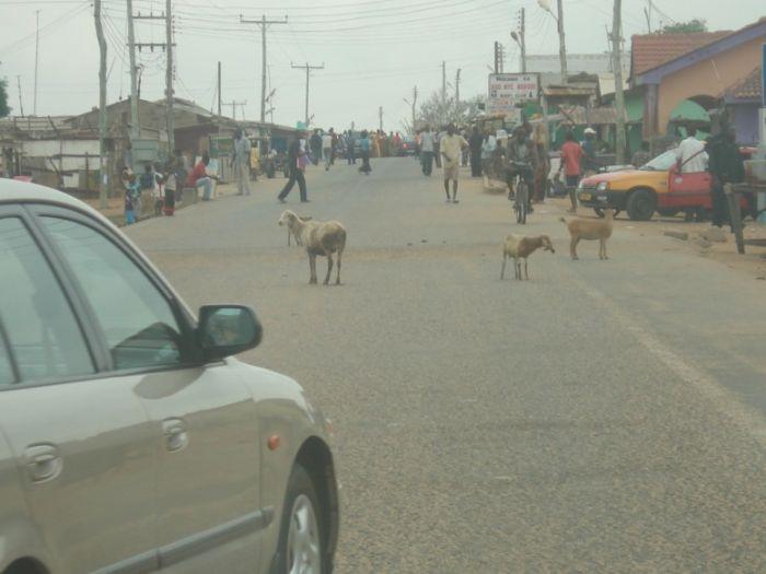 Хаос и неразбериха на дорогах Африки (21 фото)