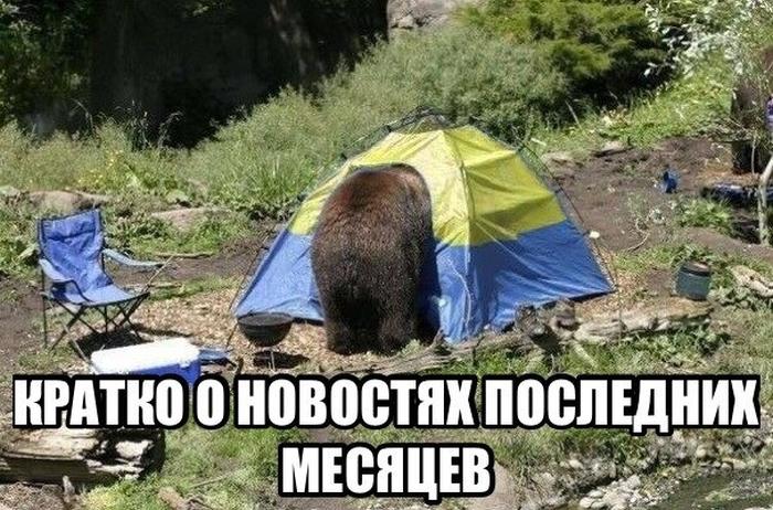 http://cdn.trinixy.ru/pics5/20140416/podb_01.jpg