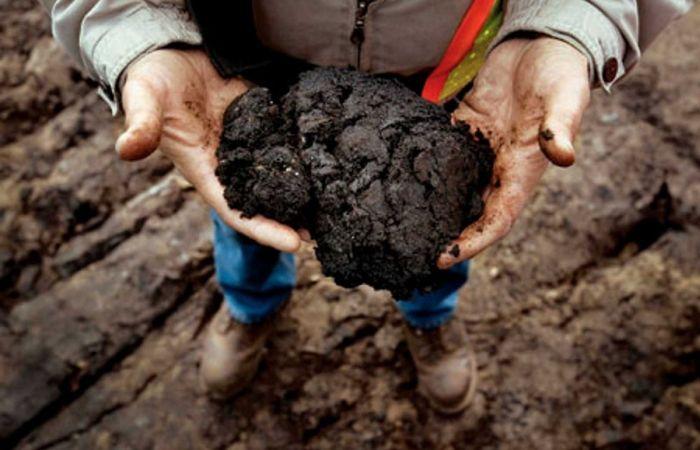 Добыча нефти из битумных песков (14 фото)