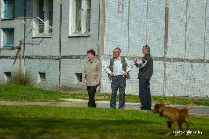 О деятельности минских черных риелторов (44 фото)