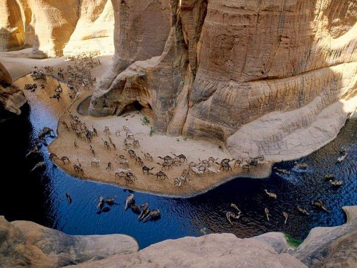 Оазис в африканской пустыне (12 фото)