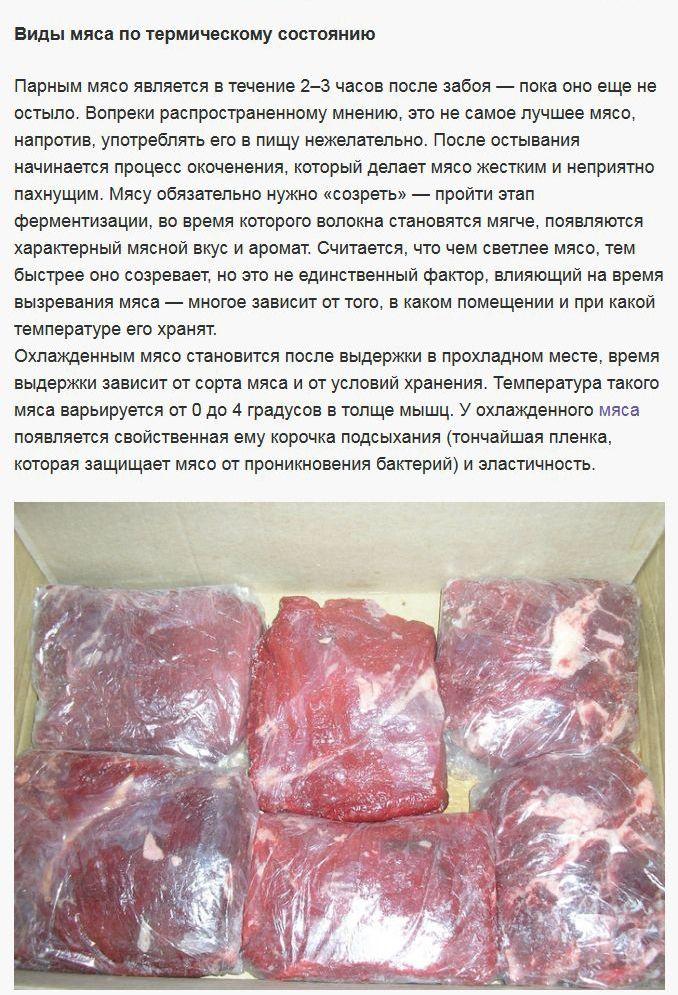Как правильно выбрать мясо для шашлыка? (8 фото)