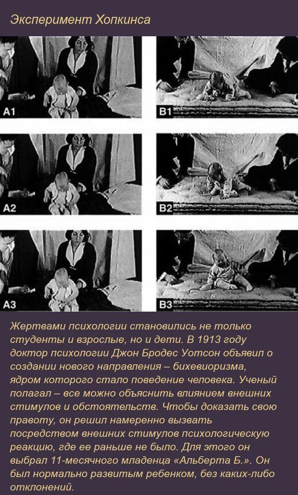 Психологические эксперименты с жуткими последствиями (9 фото)