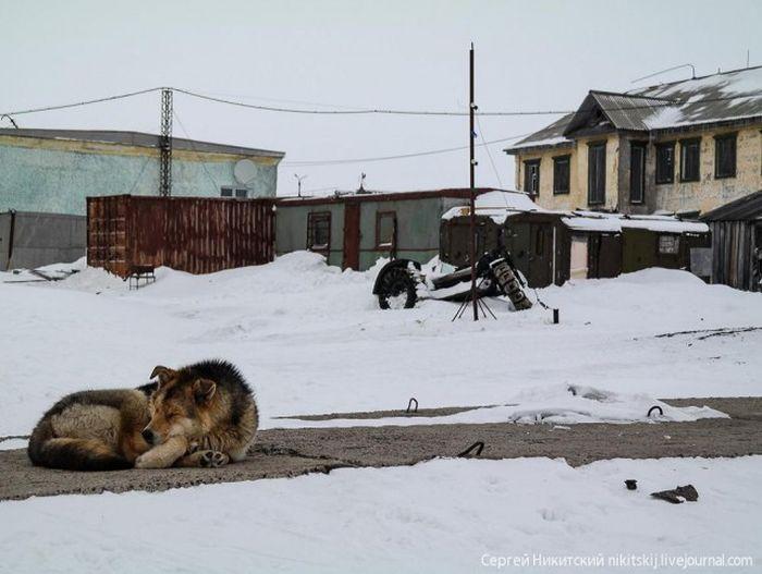 """Закрытый поселок """"Диксон"""" (31 фото)"""