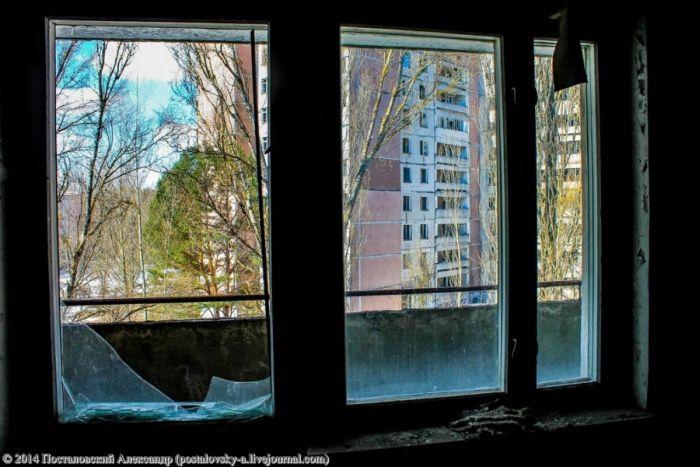 Покинутый город в Зоне Отчуждения 28 лет спустя (23 фото)