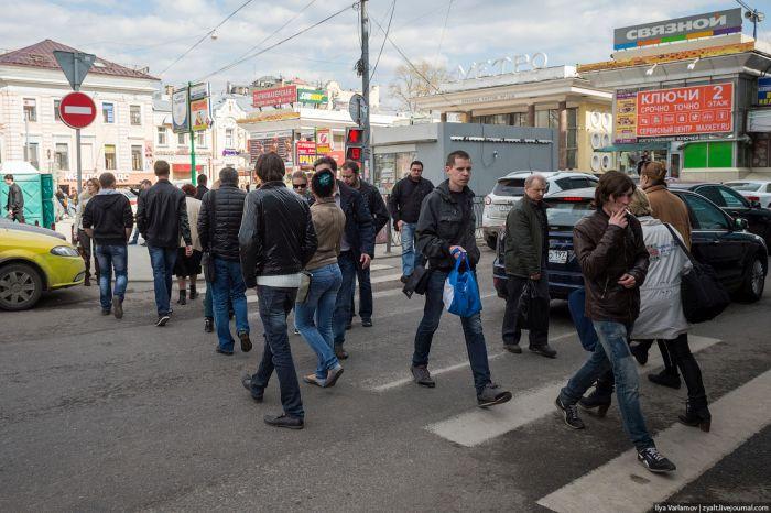 Почему на наших дорогах столько обнаглевших водителей? (9 фото)