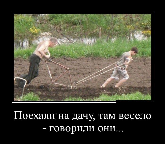 http://cdn.trinixy.ru/pics5/20140610/demotivatory_13.jpg