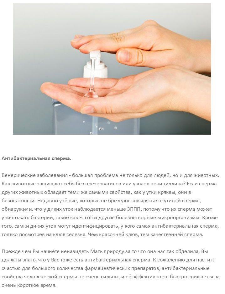 sperma-muzhchin-ee-kachestva-v-kosmetologii