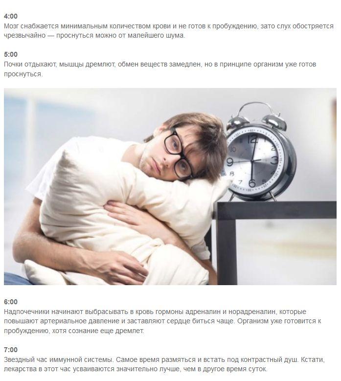 Что происходит в организме человека ночью (4 фото)