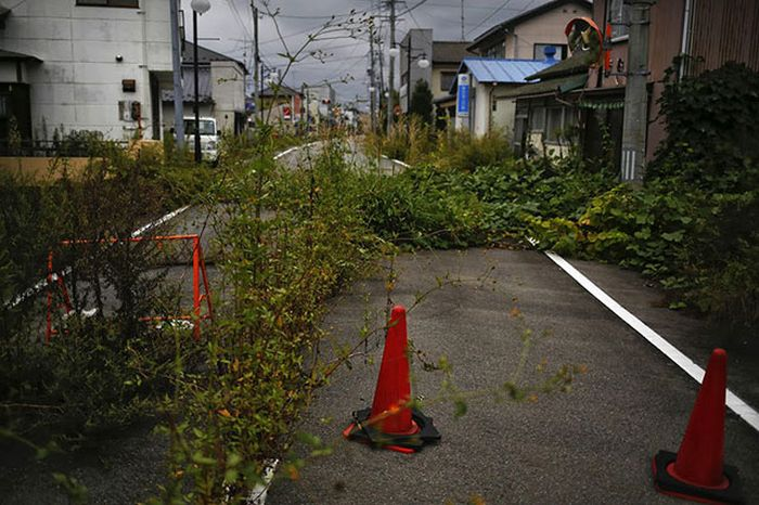 Окрестности АЭС Фукусима-1 два с половиной года спустя (24 фото)