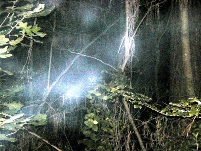 Необычные места, в которых обитают призраки (5 фото)