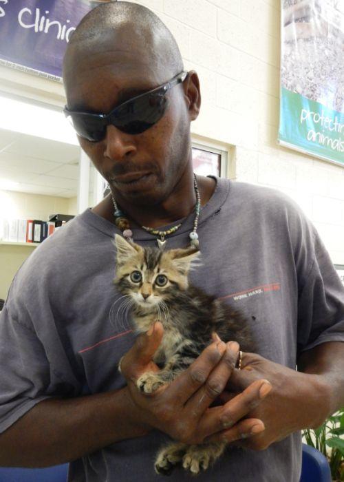 Автолюбитель разрезал свой новый пикап, ради спасения котенка (3 фото)