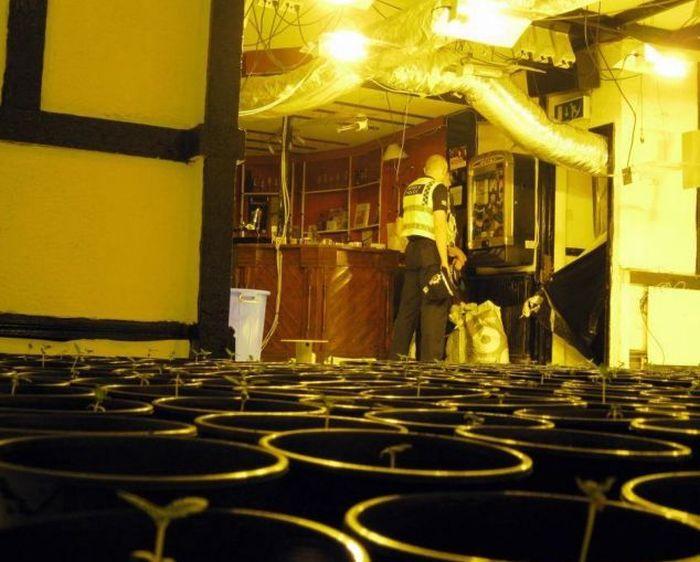 """""""Веселая"""" находка в здании заброшенного ночного клуба (5 фото)"""
